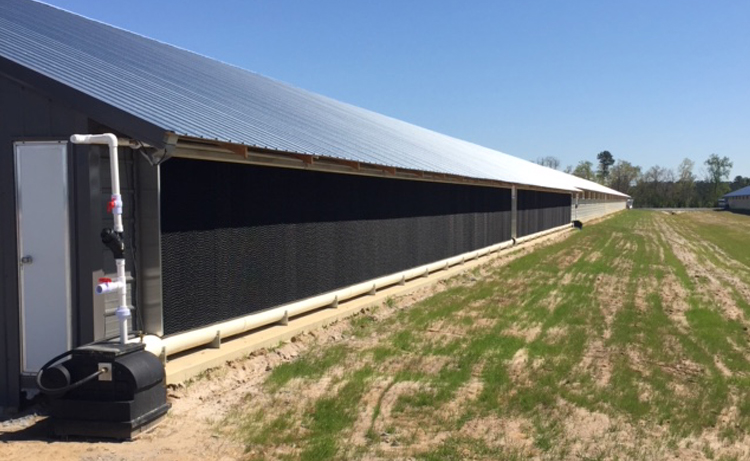 Reeves Supply Ag. House Cooling, an L.B. White Brand
